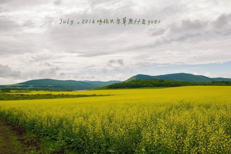 呼伦贝尔草原3.jpg