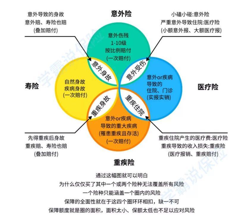 保险分类图.jpg