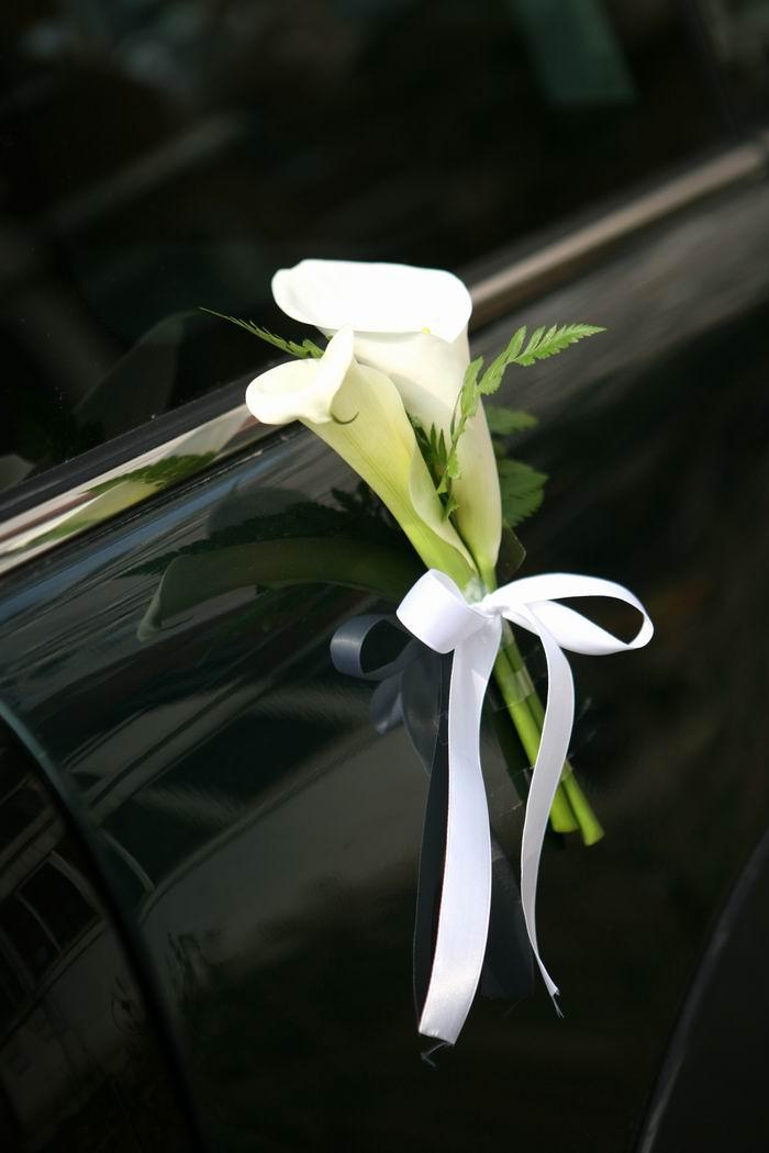 我们的婚礼主色调为白绿色,清新、淡雅、高贵~:)